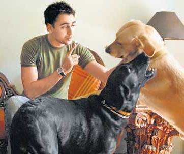 Bollywood Celebrity Pets Kutta Mat Bolna Bollywood Presents