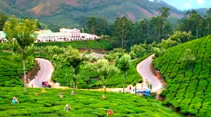 Munnar in Kerala – The Kashmir of South India