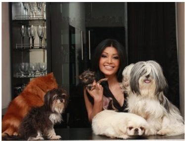 koena mitra's toy breed dogs