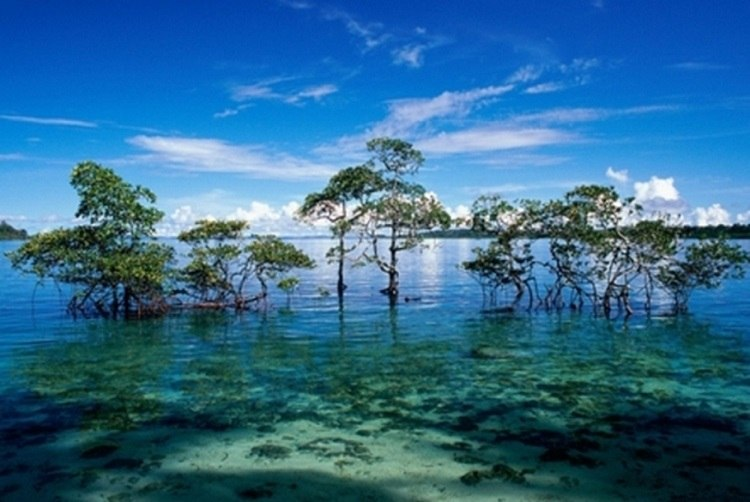 Nicobar Andaman Islands