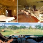 Sabi Sabi Earth Lodge