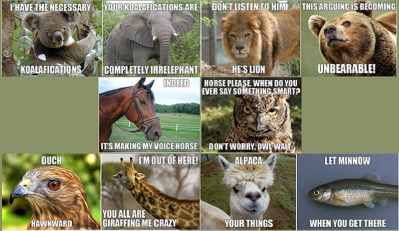 zoo animals funny meme